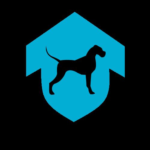 Elite Canines Training